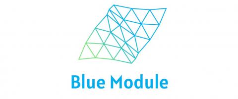 Logo Blue Module