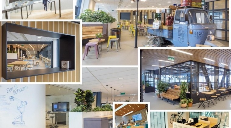 Met 'beleving en vitaliteit' wint VGZ Workplace Award 2017