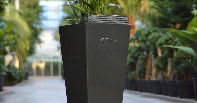Plant met stekker tegen Sick Building Syndrome