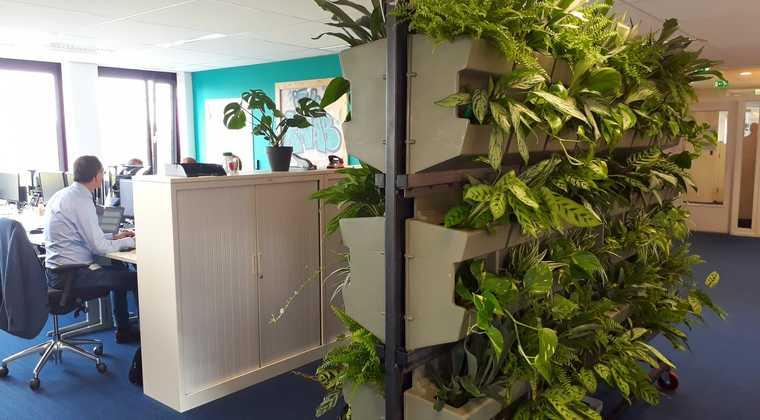 Wilde Wand brengt luchtzuiverende planten in kantoren
