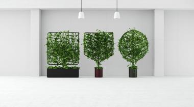 Gevoel van welzijn werknemers stijgt dankzij groene wanden in kantoor