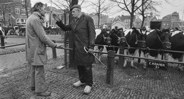 'Struisvogelpolitiek en koehandel'