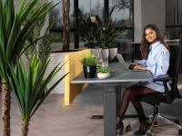 Gezonde werkplek ook thuis belangrijk