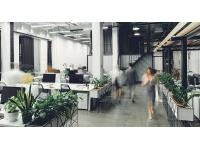 Optimalisering van de kantoorconfiguratie – Vraag en aanbod van ruimte op elkaar afstemmen